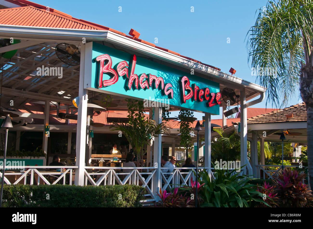 Olive Garden Bahama Breeze Fasci Garden