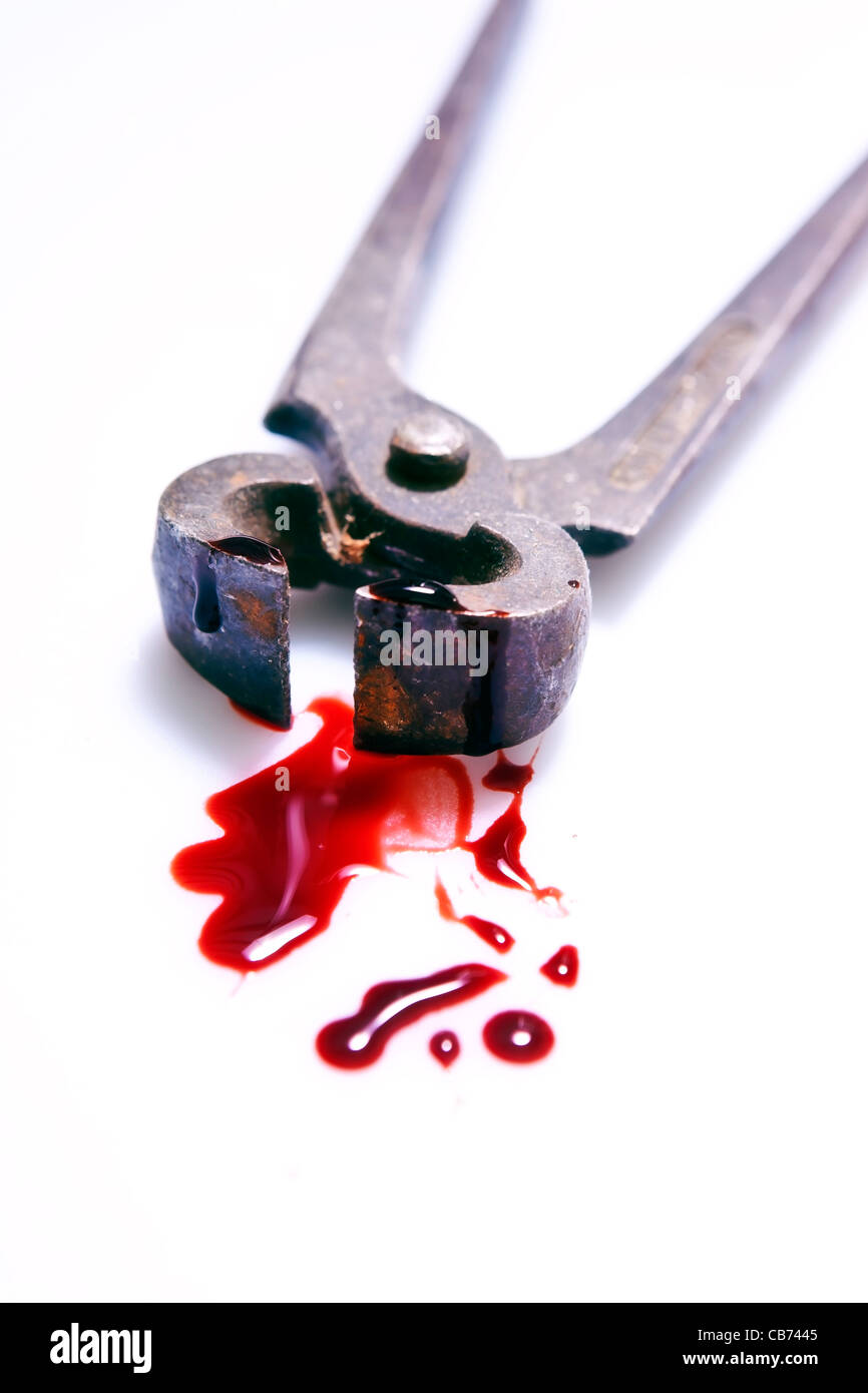 rusty pliers with blood - Stock Image