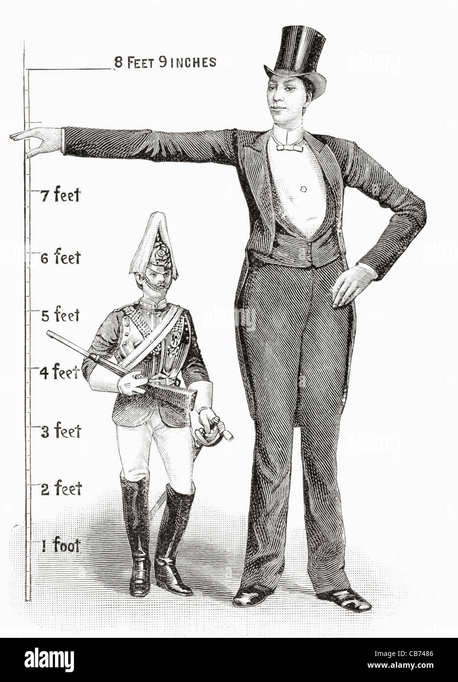 how to become 6 foot 3