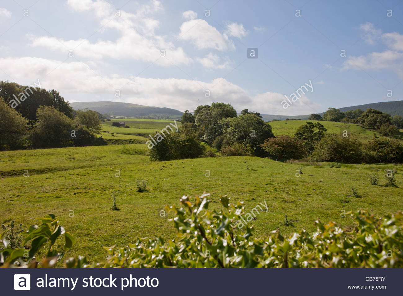 Whorlton - earthwork are all that remains of old village and burgh Abandoned village of Whorlton, North Yorkshire - Stock Image