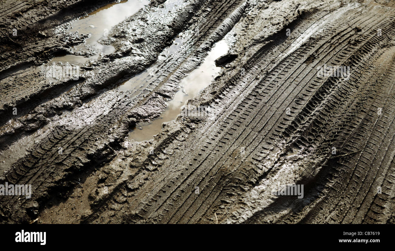 Tire patterns on the mud with reflection and water, selective focus - Stock Image