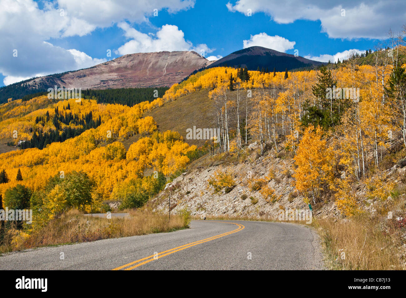 Autumn Color with Aspens turning - on Kebler Pass road - Stock Image