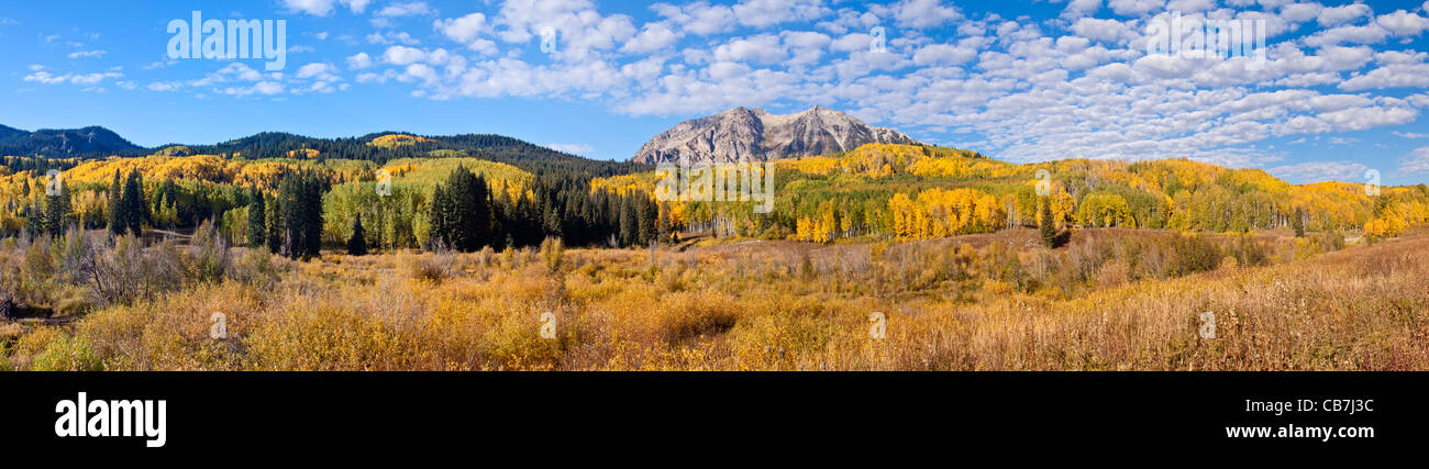 Panorama of autumn color with Aspen trees on the road over Kebler Pass near Crested Butte, Colorado. - Stock Image