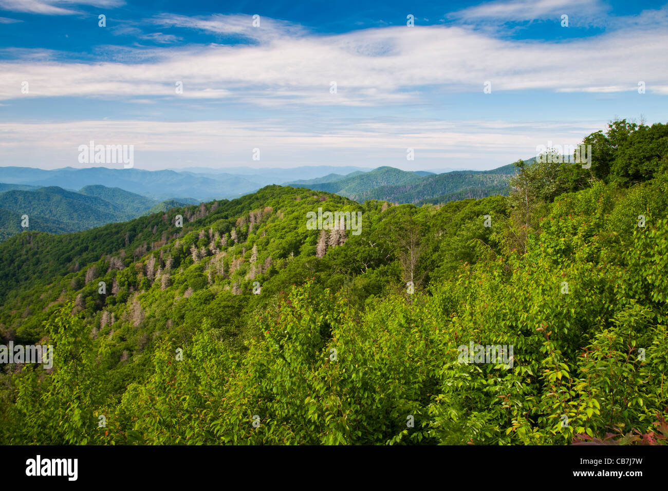 Overlook View in the Great Smoky Mountains National Park on the North Carolina side of the park. - Stock Image