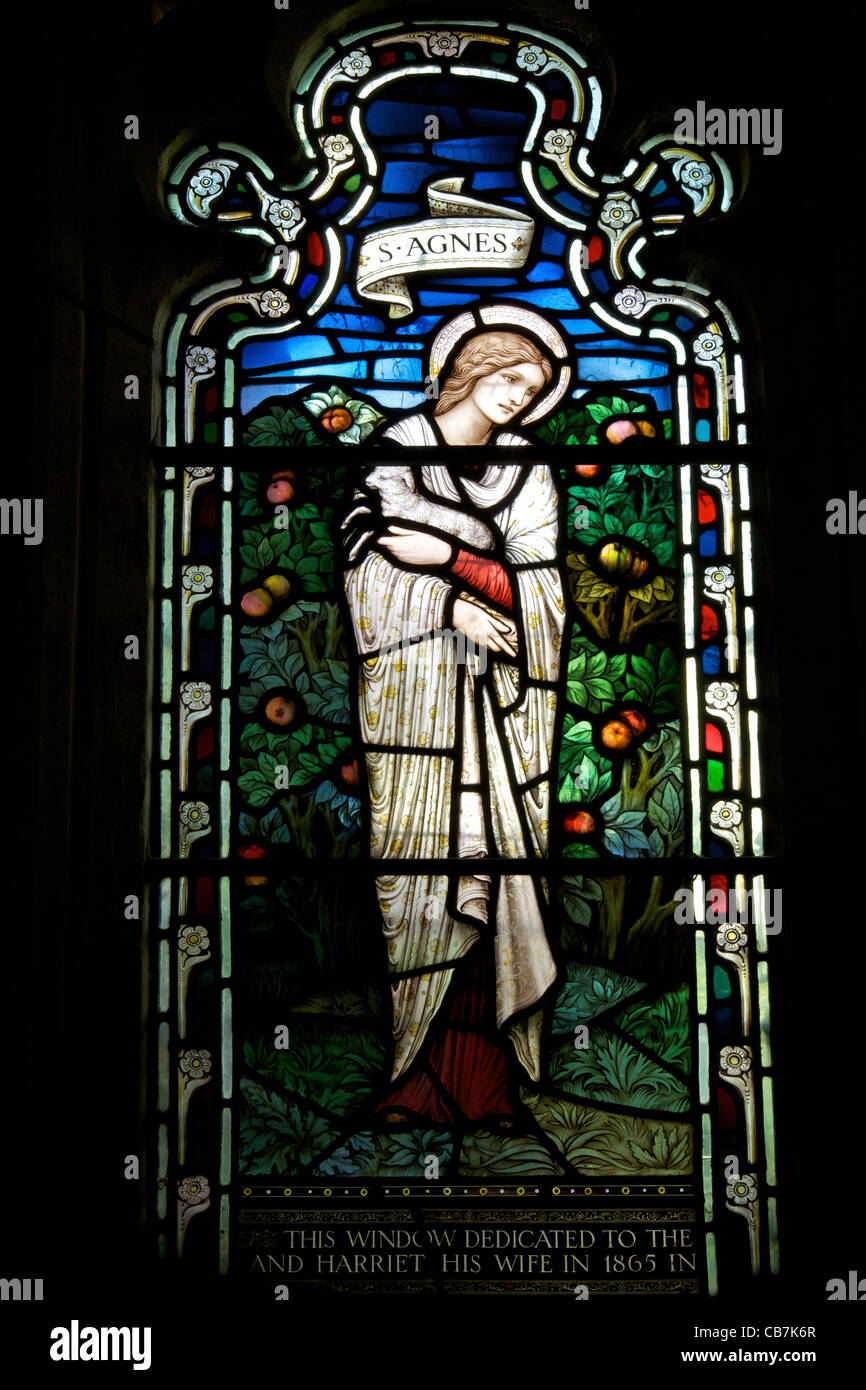 Stained glass window of St Agnes, by  Stephen Coyne, Morris & Co, 1924, cloisters, Gloucester Cathedral, Gloucestershire, - Stock Image