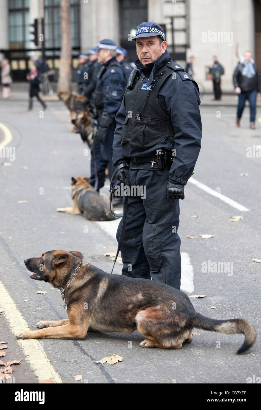 the role of the dogs in the police force He has changed the public image of the police force so much that many other police precincts in the area are considering adding their own monkeys to the force 5 & 6.