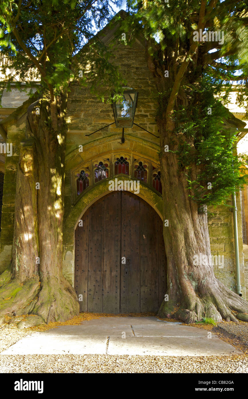 St. Edward`s Church with ancient yew trees growing into north porch, Stow-on-the-Wold, Cotswolds, Gloucestershire, - Stock Image