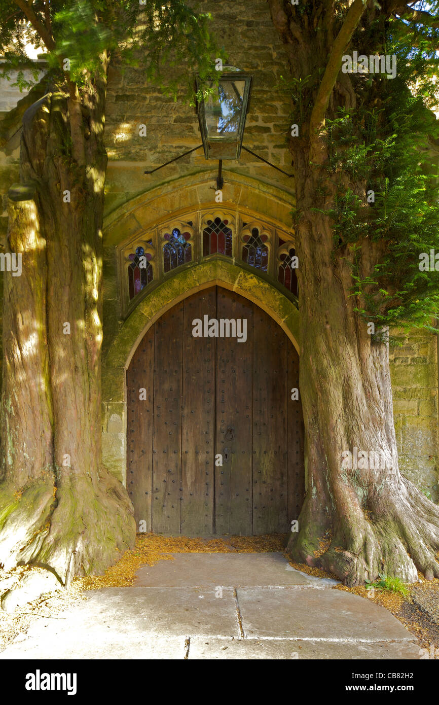St. Edwards Church with ancient yew trees growing into north porch, Stow-on-the-Wold, Cotswolds, Gloucestershire, - Stock Image