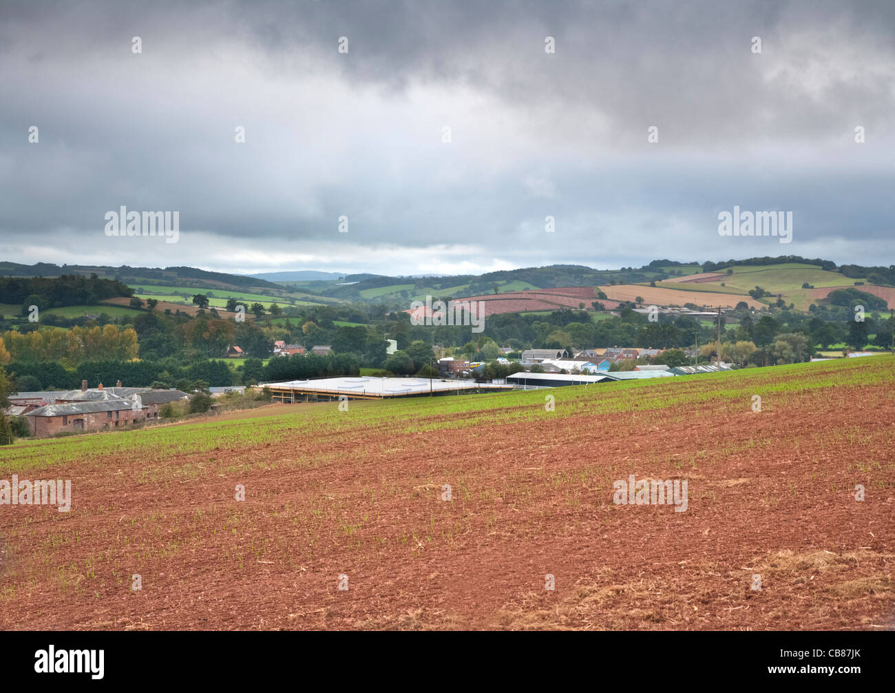 Farm fields and landscape with buildings, Devon, England - Stock Image