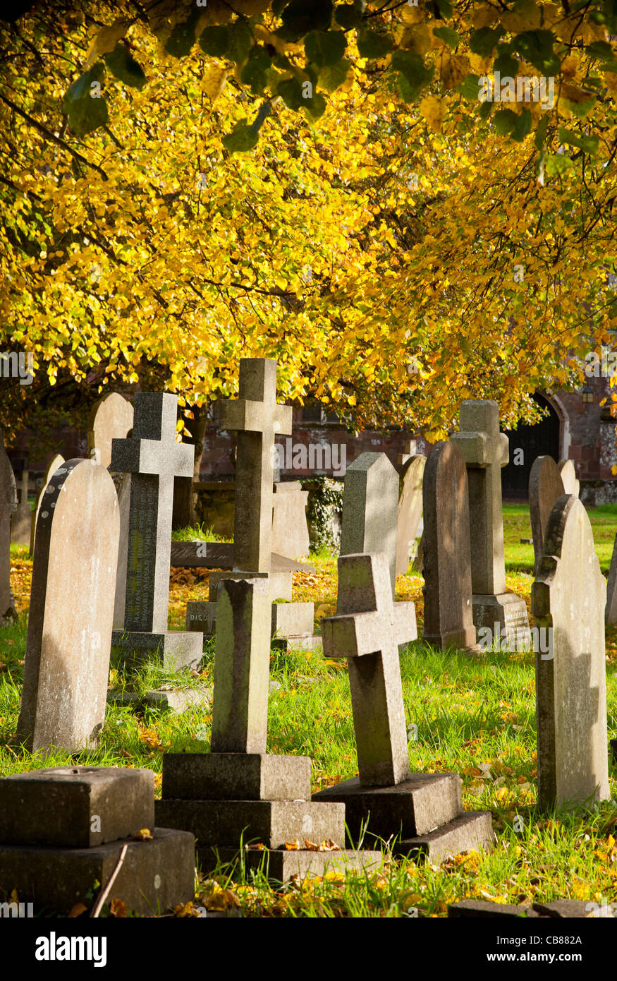 Graveyard in autumn - part of a managed conservation area, Crediton , Devon, England - Stock Image