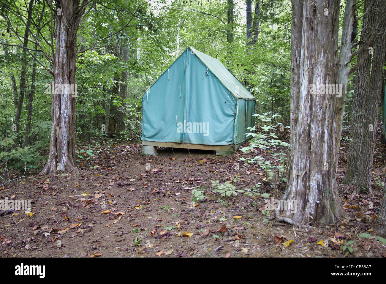 Tent in the woods - Stock Image