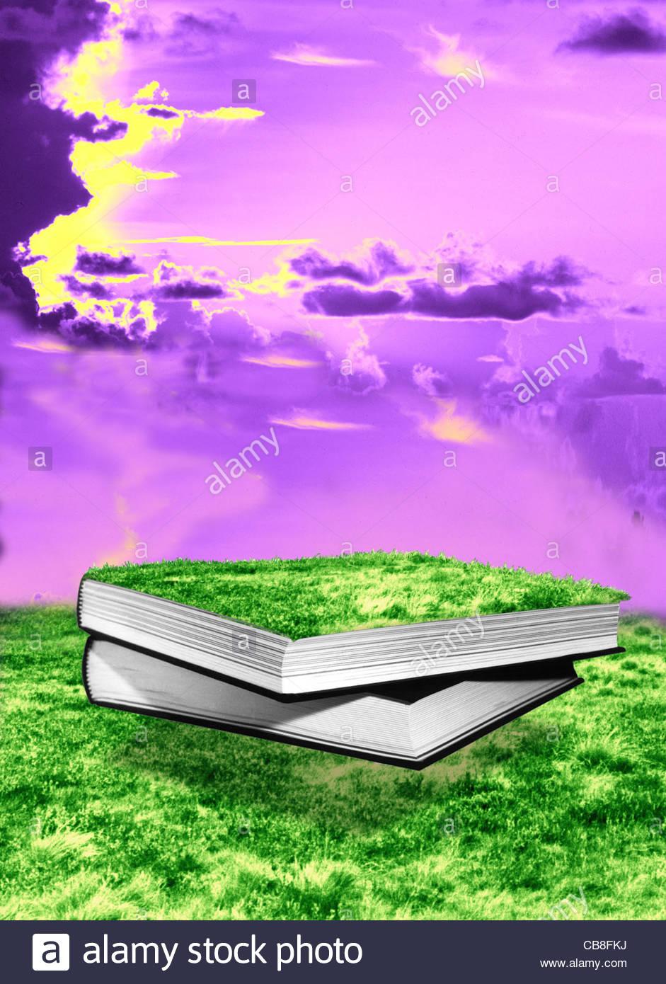 The Secret Garden Book Illustration Stock Photos
