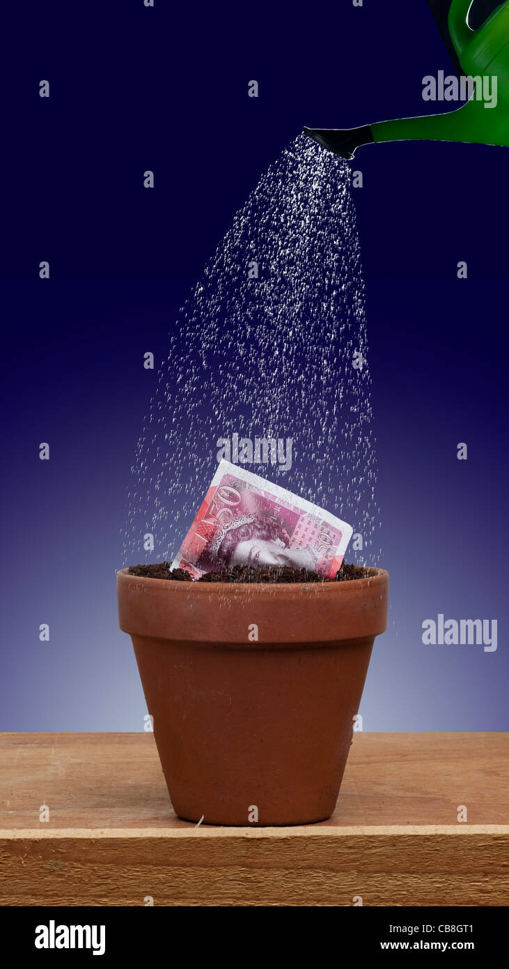 £50 50 pound note seedling growing into new currency in an earthenware terracotta flower pot while being watered - Stock Image