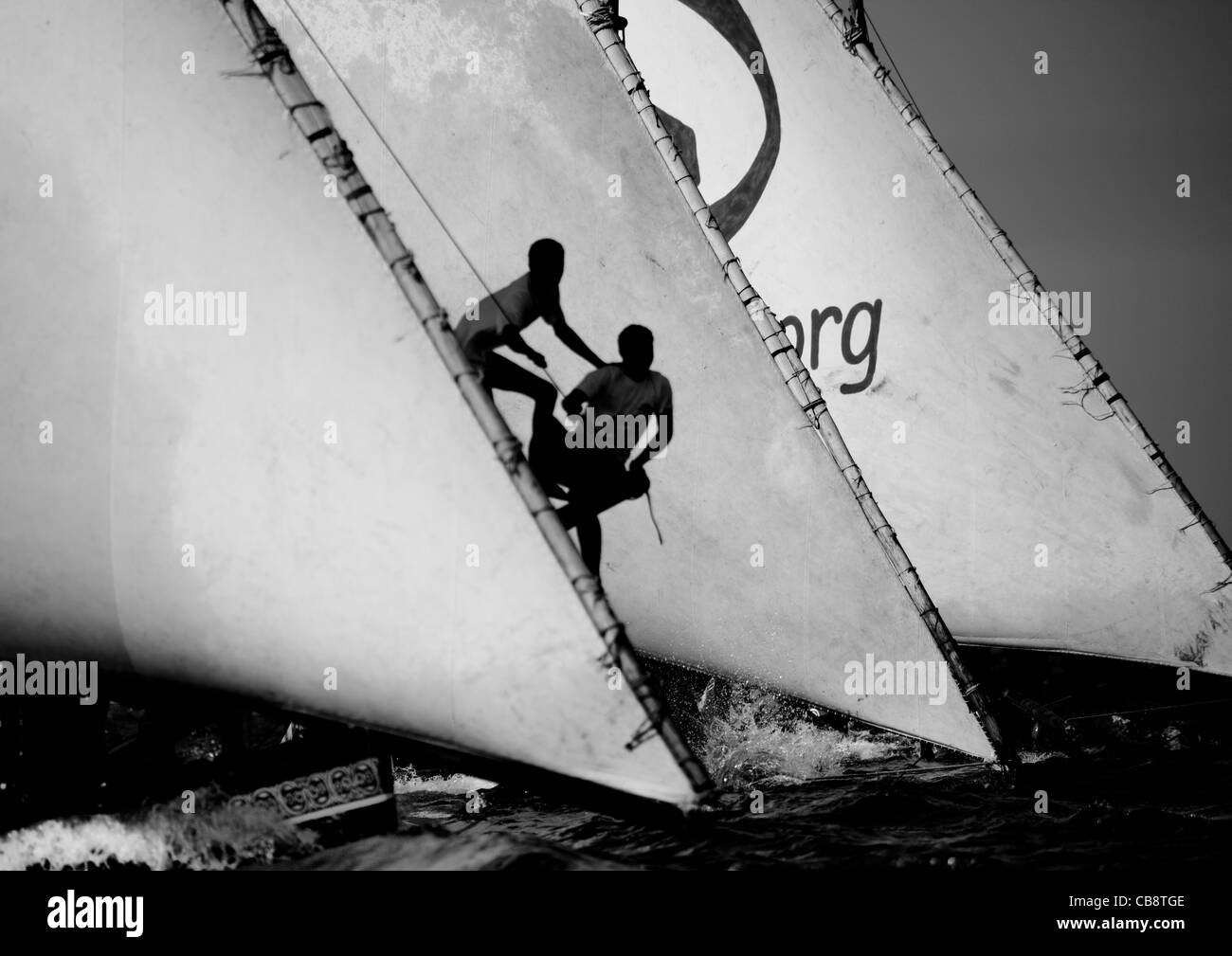 Steerage Of Dhow During The Dhow Race, Maulidi Festival, Lamu, Kenya - Stock Image