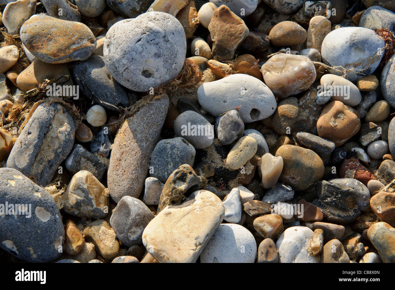 Closeup of Pebbles on Great Yarmouth beach, Norfolk, United Kingdom. - Stock Image