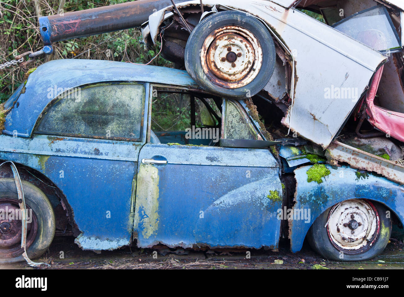Old Morris Minor car with moss growing on it, in the scrap yard - Stock Image