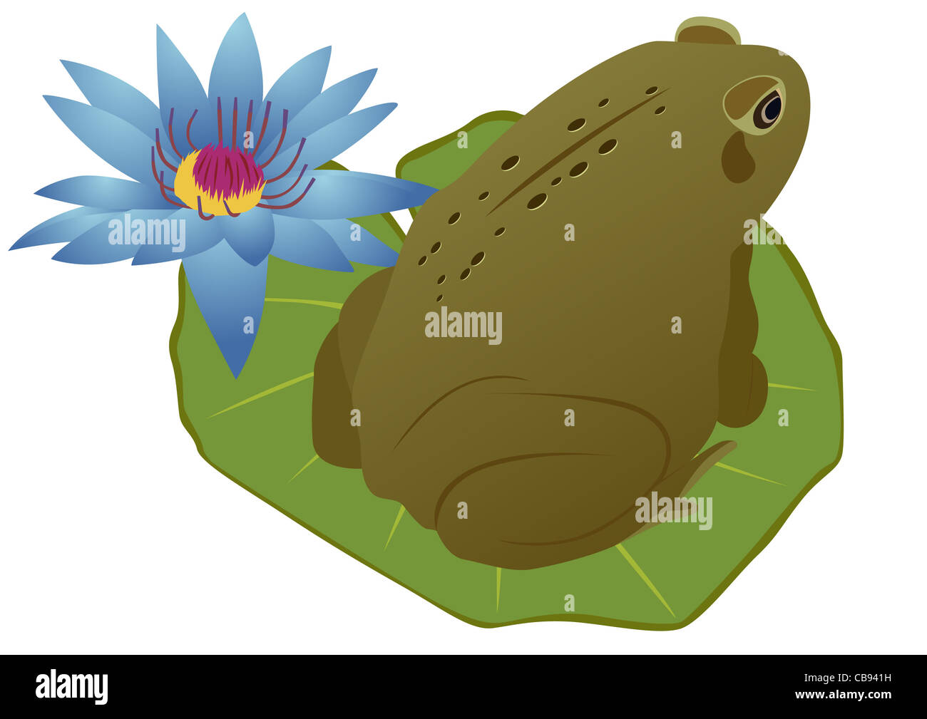 Purple Frog Cut Out Stock Images & Pictures - Alamy