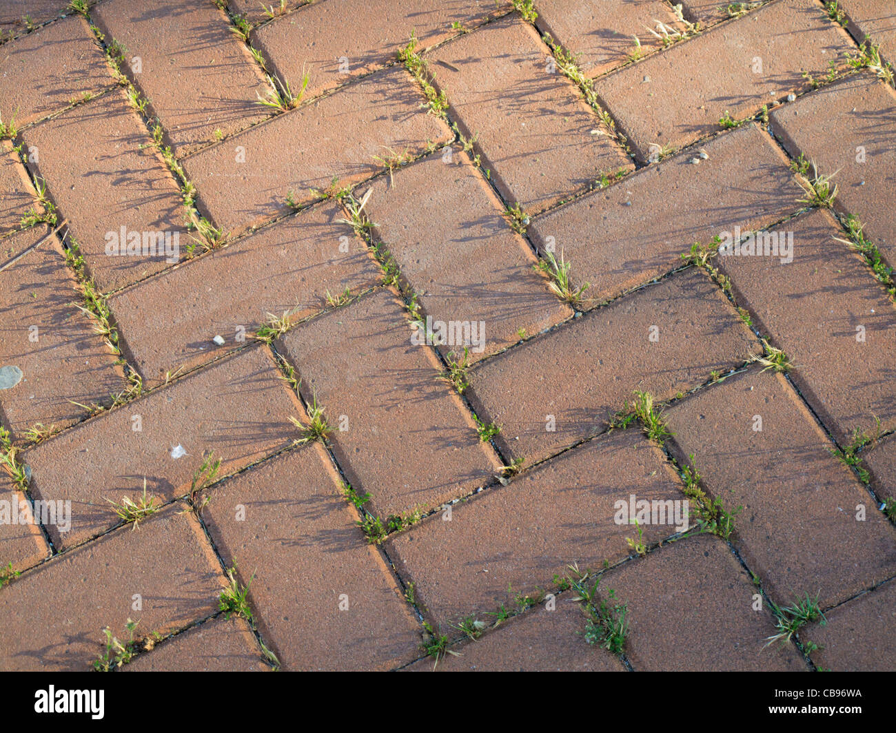 Block-paved road, Italy. - Stock Image