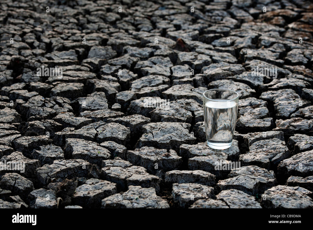 Glass of water on dry cracked earth. India - Stock Image