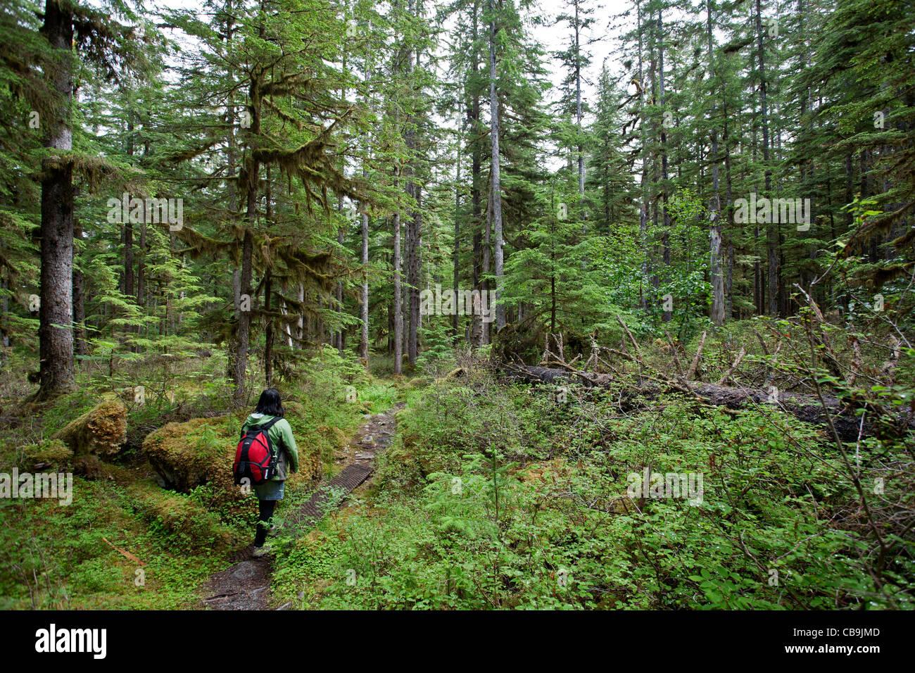 woman in a rain forest. Glacier Bay. Alaska. USA - Stock Image