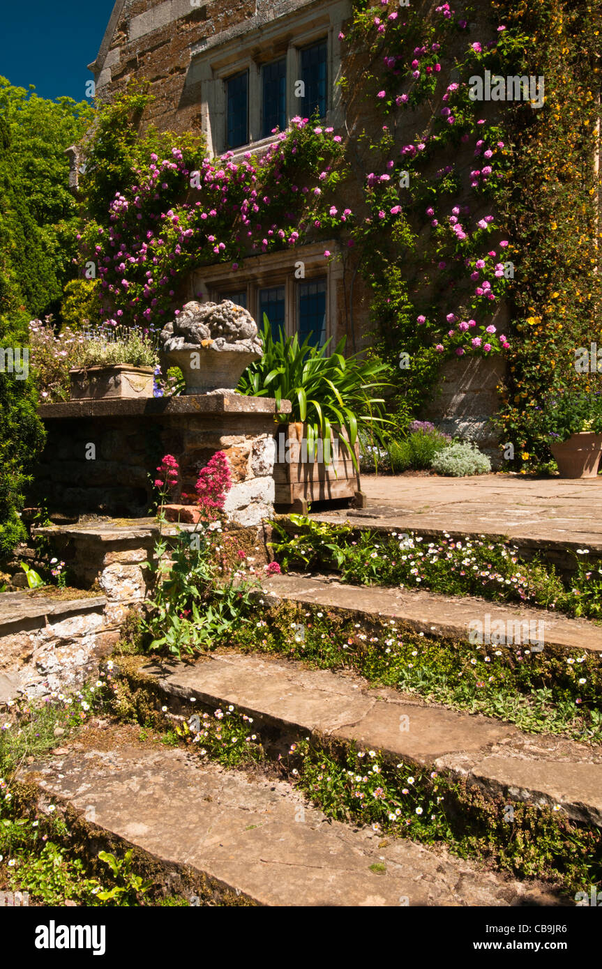 York stone steps lead to a terrace garden at Coton Manor with ...