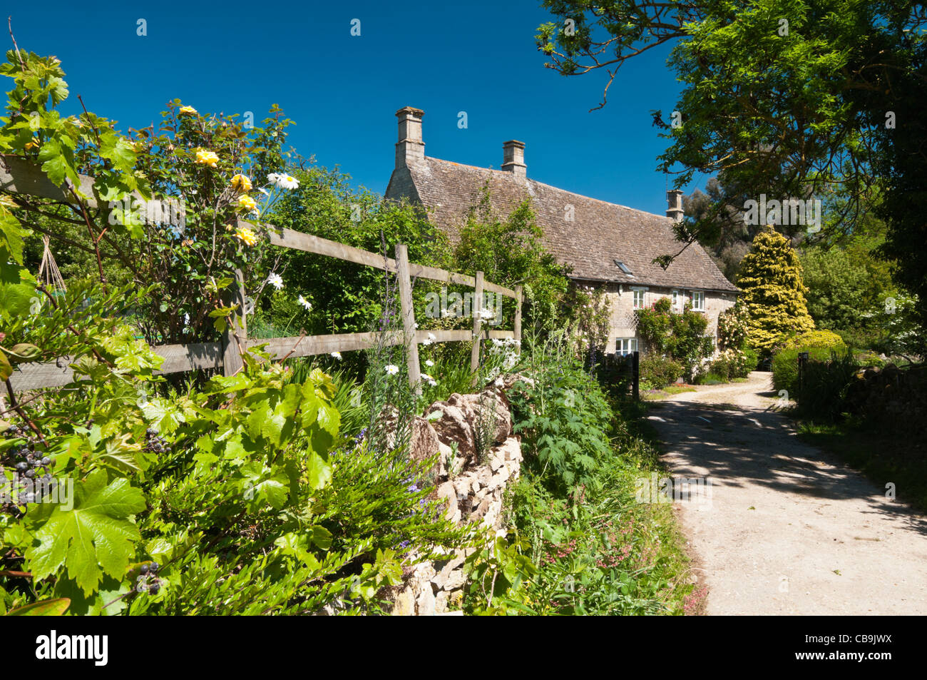 Stone house cottage gardens stock photos stone house cottage a narrow lane leads to a stone built house with rose covered walls in the village workwithnaturefo