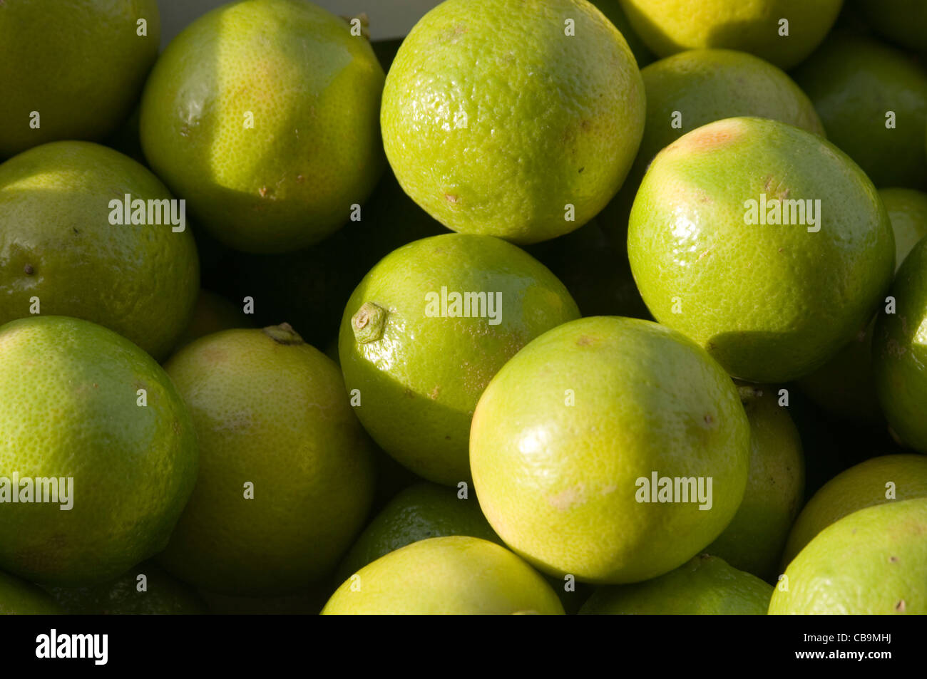 lime limes fresh squeezed freshly - Stock Image