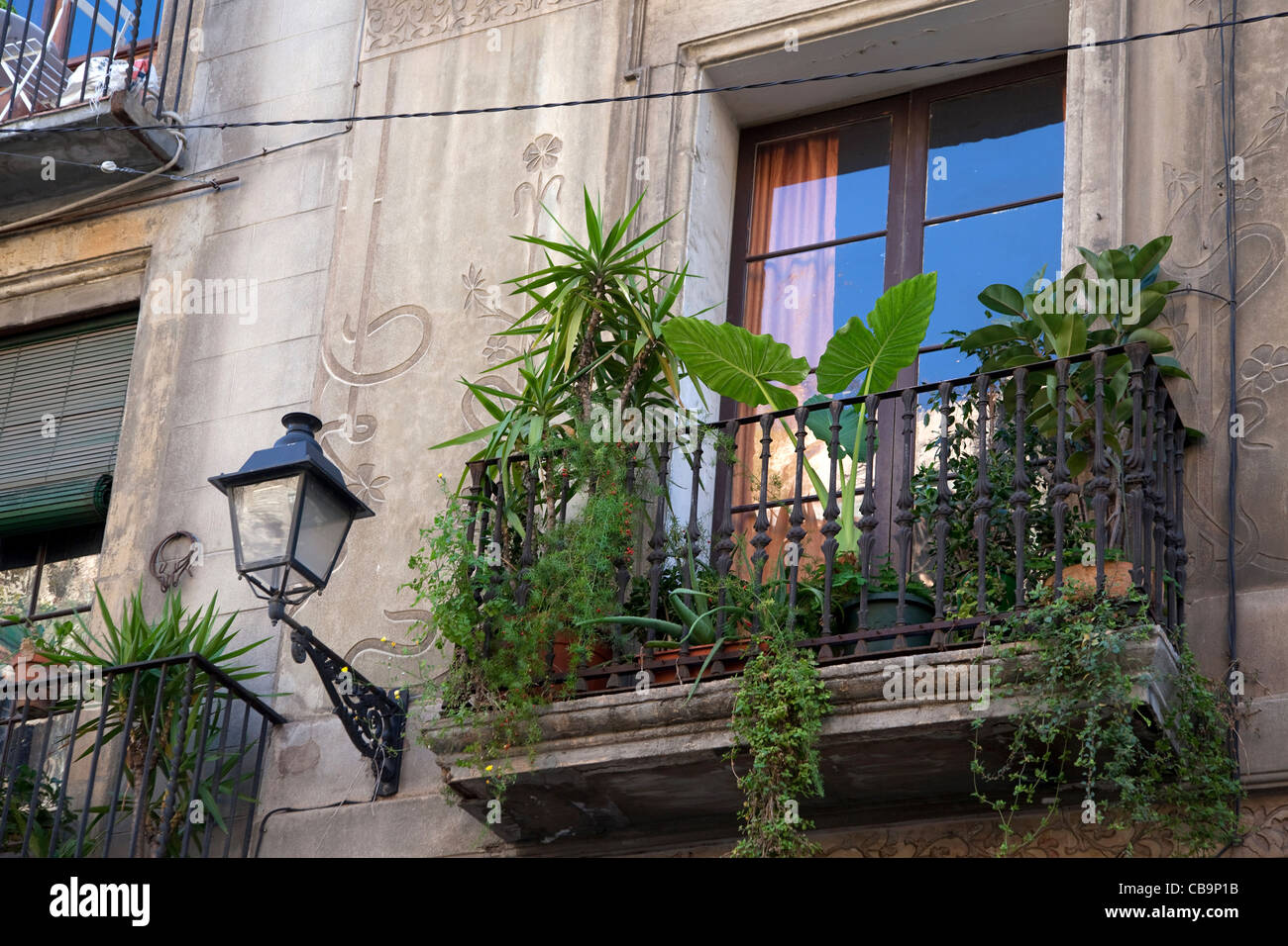 Balcony garden with palms in the Barri Gòtic / Gothic quarter in Barcelona, Spain - Stock Image