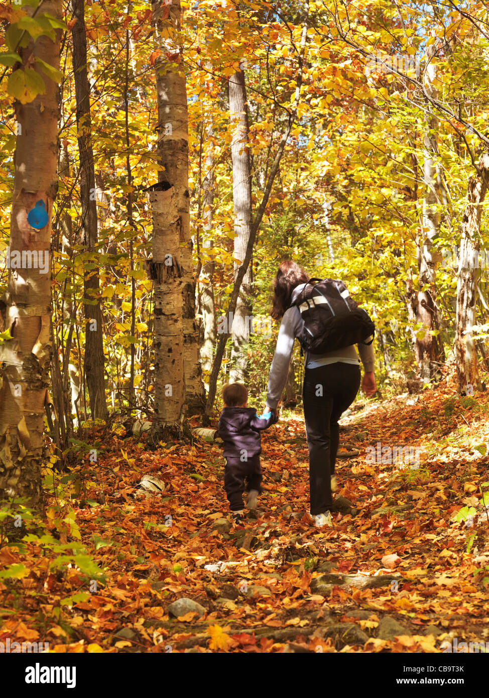 Woman with a child walking along a hiking trail in fall nature scenery. Killarney Provincial Park, Ontario, Canada - Stock Image