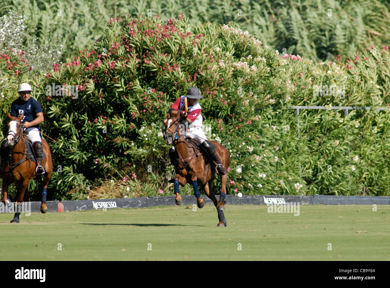 Polo player at full gallop during match - Stock Image
