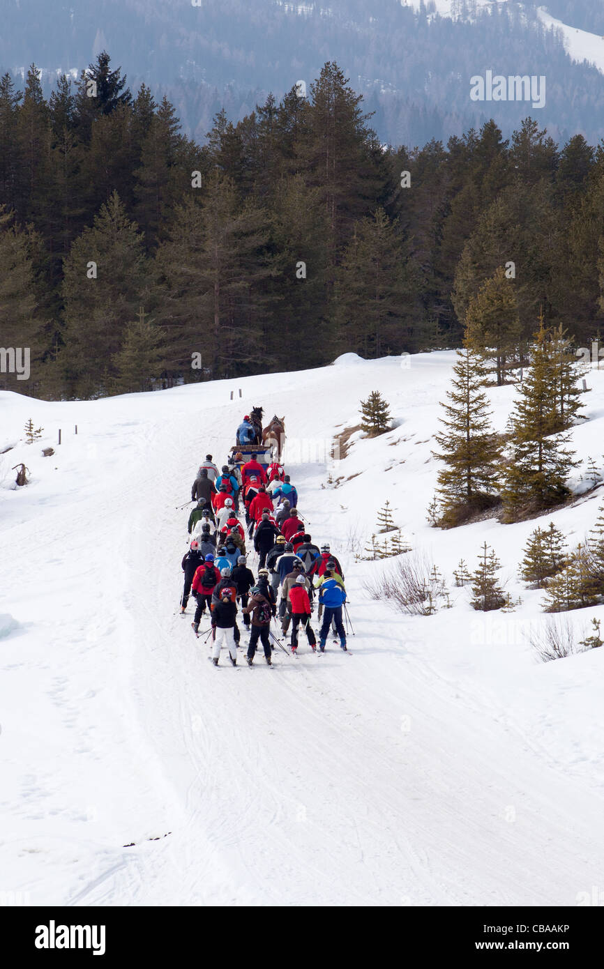 horse pulled ski tow near Armentarola in the Alta Badia Sella Ronda Italy - Stock Image