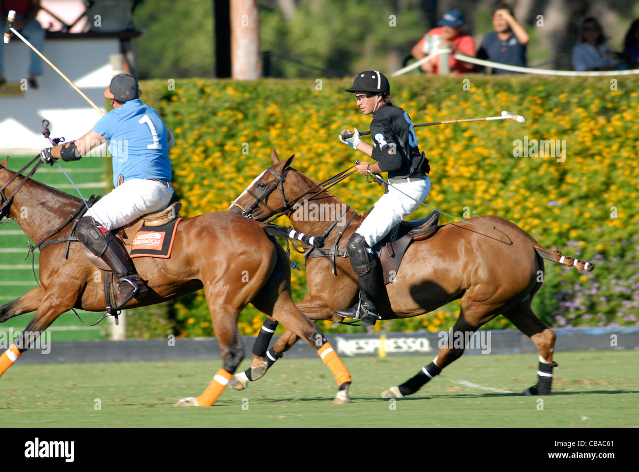 2 polo players in action during match - Stock Image