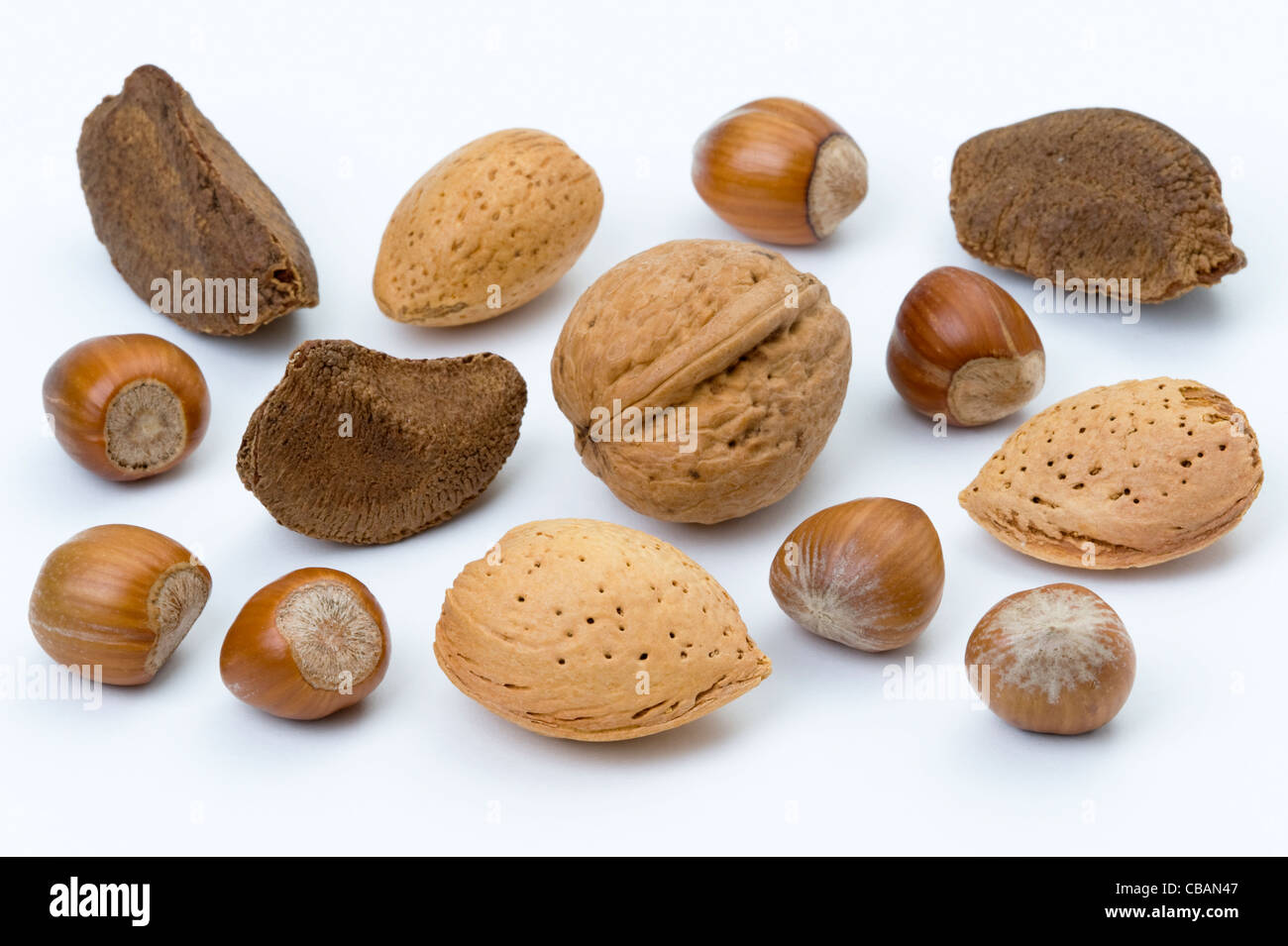 a selection of nuts in their shells including: almond, brazil, walnut, hazel nut - Stock Image