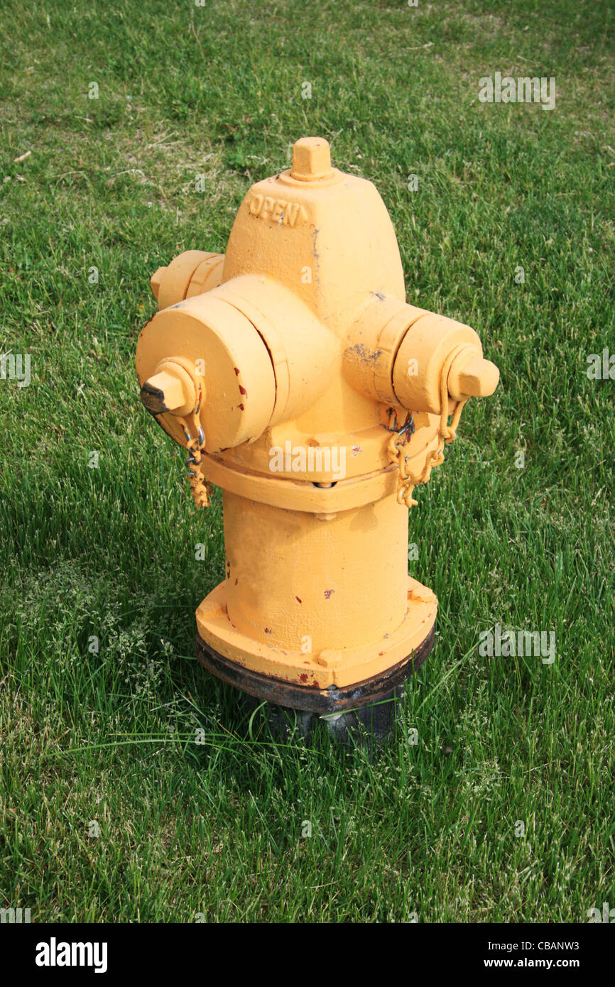 yellow fire hydrant on green grass lawn - Stock Image