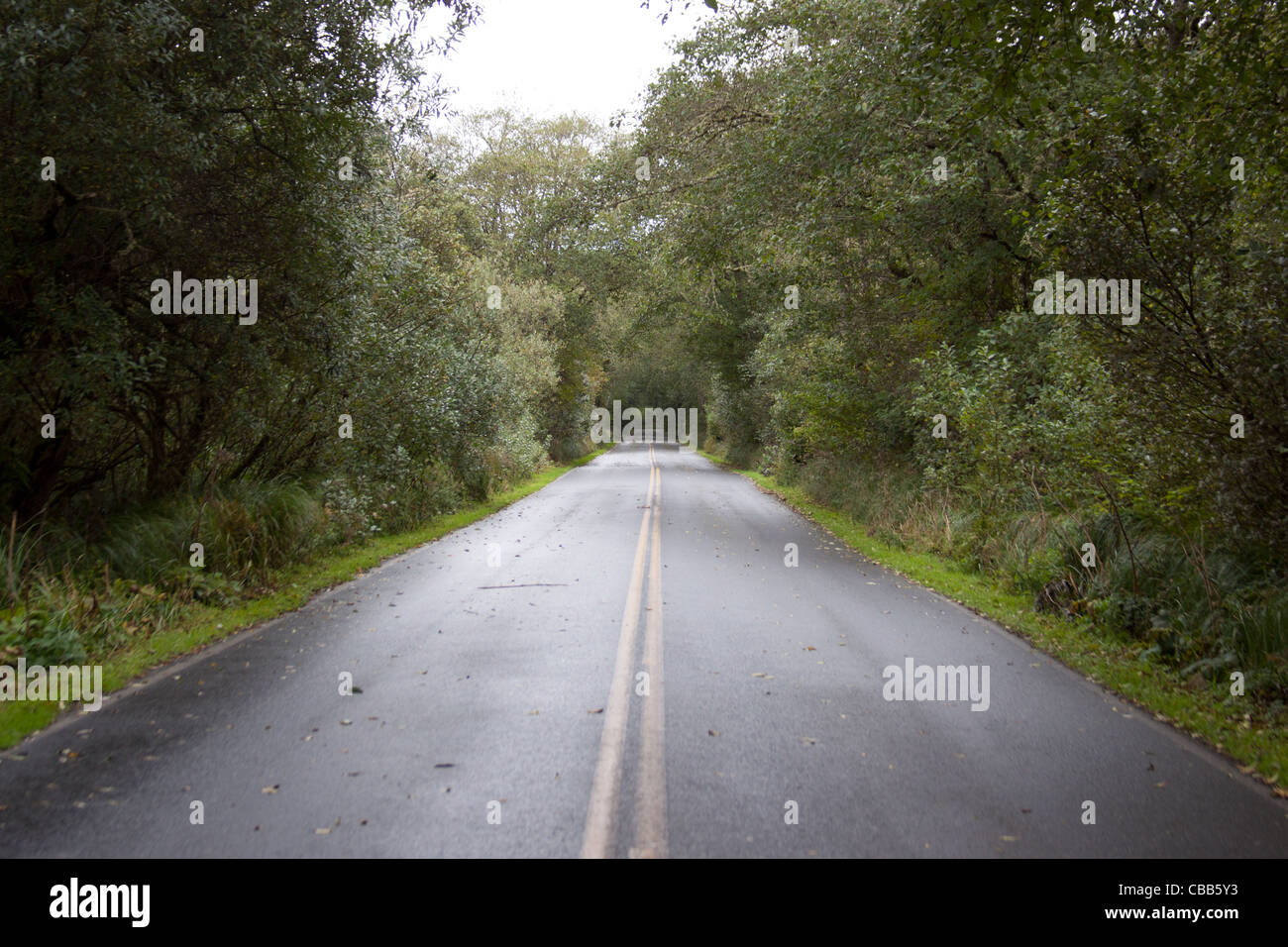 Road stretching far ahead. - Stock Image