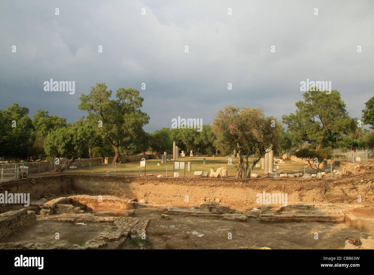 Israel, Coastal Plain, archaeological excavations in Ashkelon, site of the Herodian Basilica - Stock Image