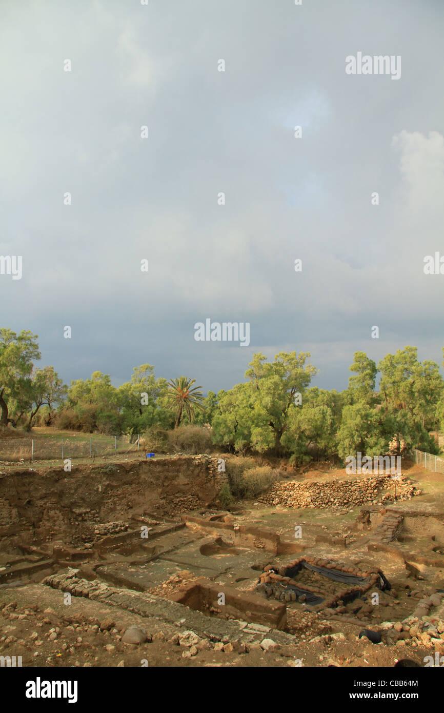Israel, Coastal Plain, archaeological excavations in Ashkelon - Stock Image