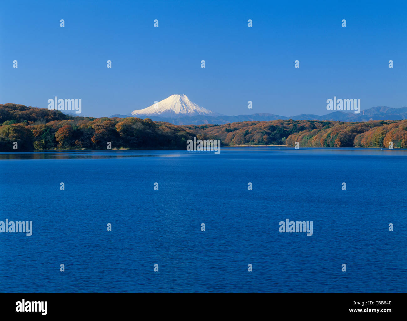 Mount Fuji and Lake Sayama, Tokorozawa, Saitama, Japan - Stock Image