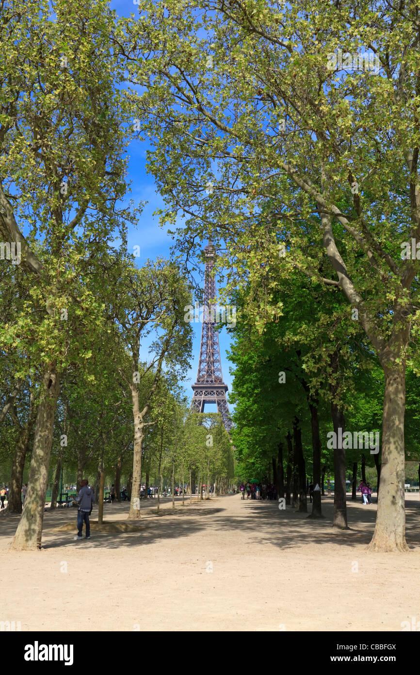 Avenues of Plane Trees in the Champ de Mars, Paris - Stock Image