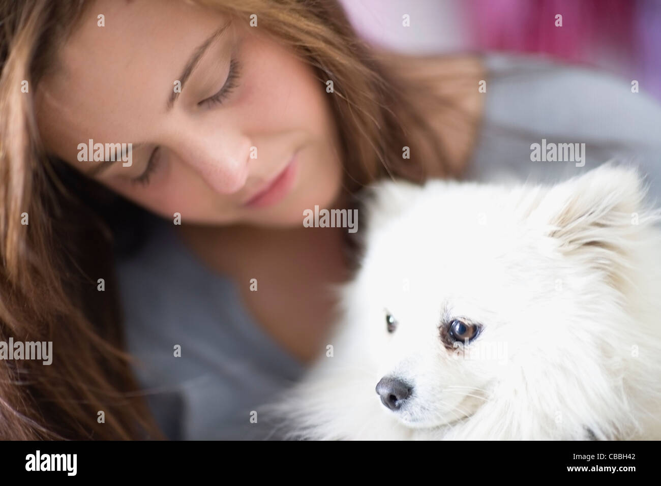 Teenage girl petting dog - Stock Image