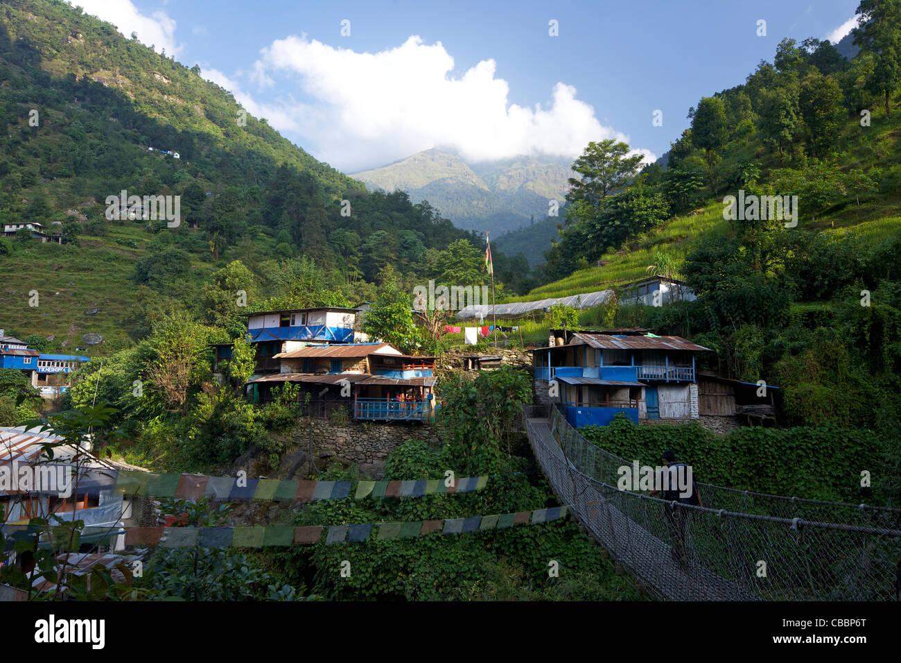 Trekker crossing suspension bridge near Ulleri, Annapurna Sanctuary Region, Himalayas, Nepal, Asia - Stock Image