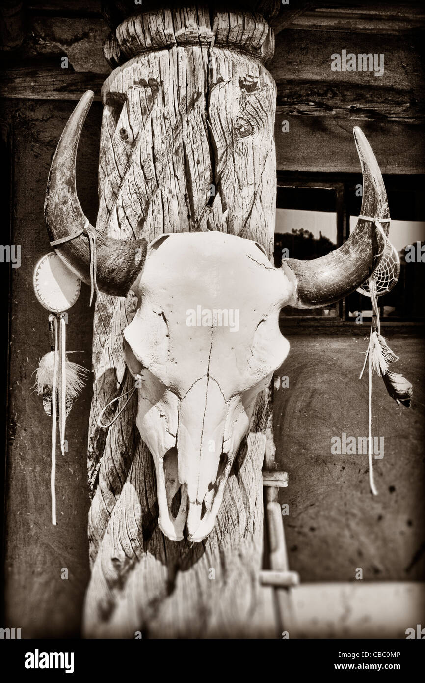 Cow skull hanging on post at Taos Pueblo in New Mexico - Stock Image