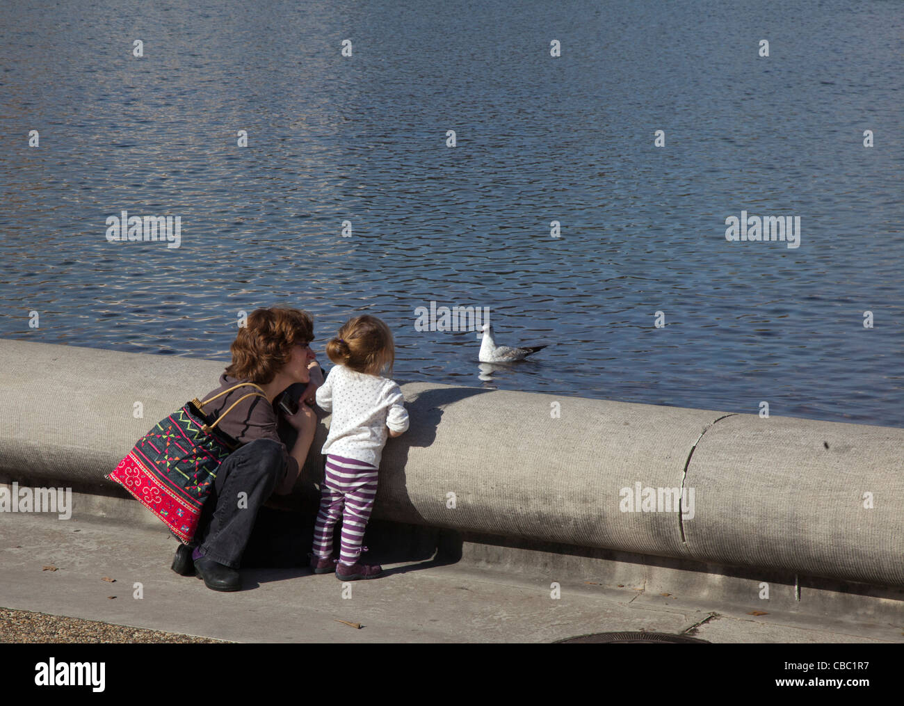 Washington, DC - A mother and daughter watch a gull floating in the reflecting pool in front of the U.S. Capitol. - Stock Image