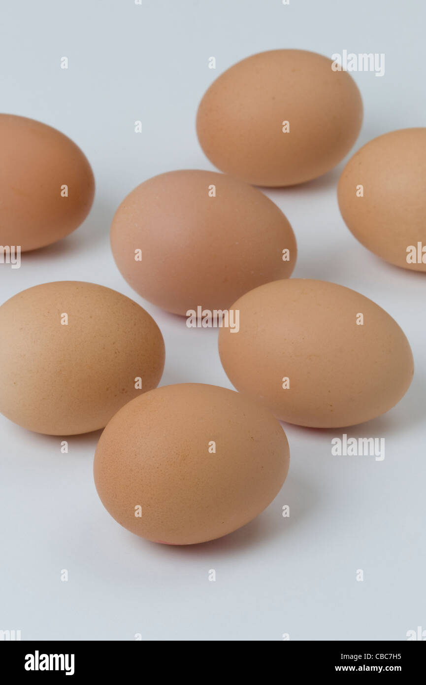 a group of brown hens eggs against a white background - Stock Image