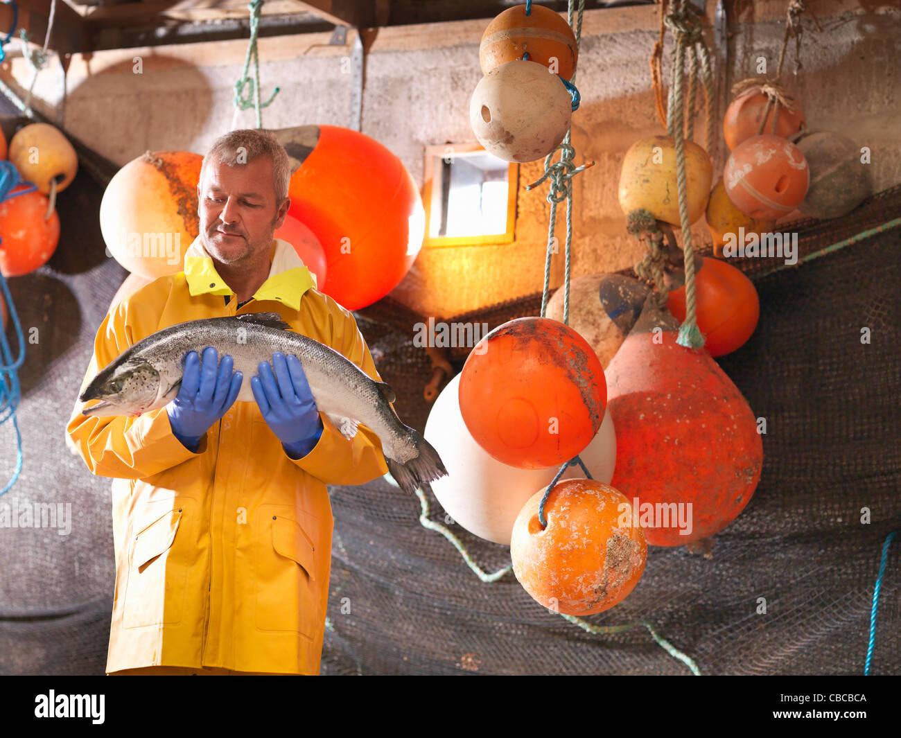 Fisherman holding salmon on boat - Stock Image