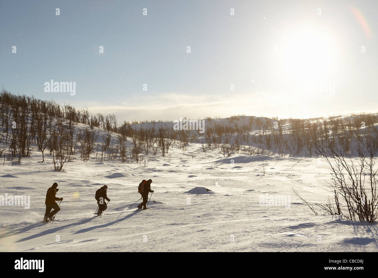 Cross-country skiers walking in snow - Stock Image