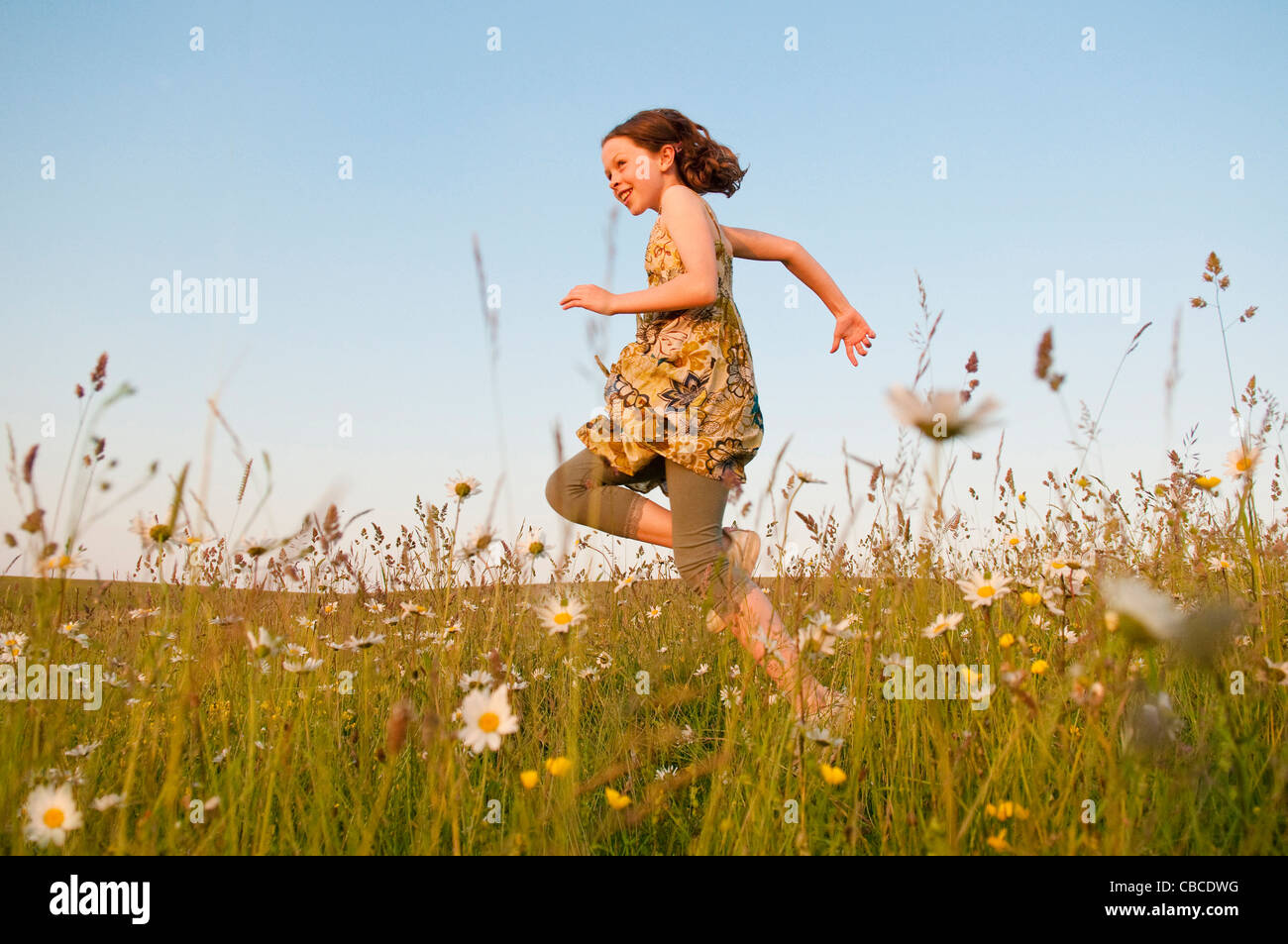 Girl Running In Field Of Flowers Stock Photo 41456284 Alamy