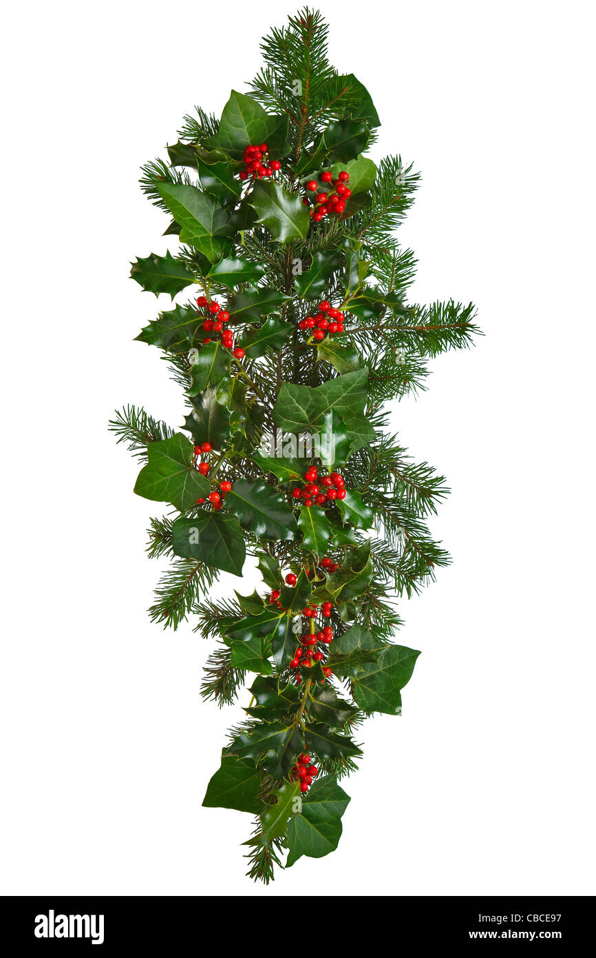 Photo of a straight Christmas garland with holly, red berries, ivy and spruce. Isolated on a white background. - Stock Image