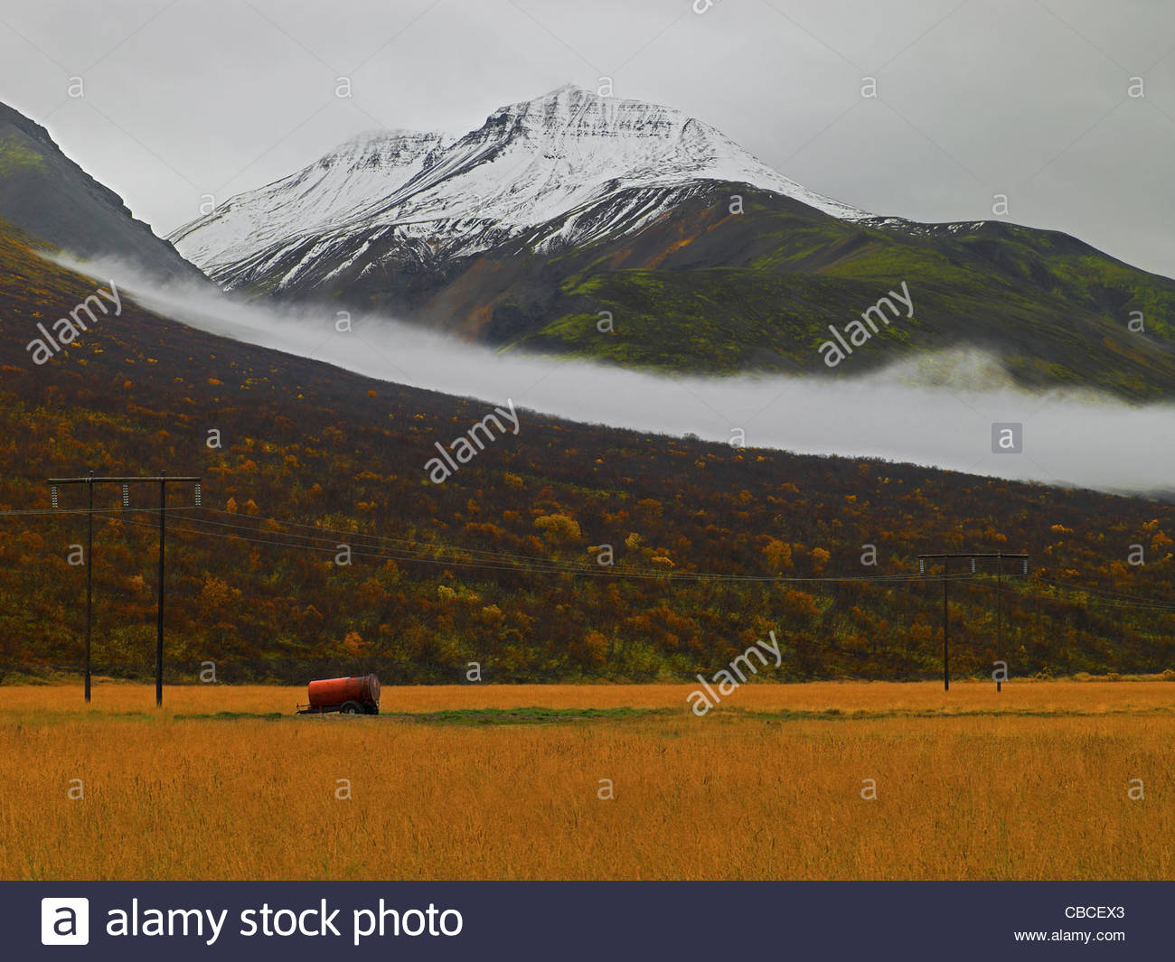 Tractor in hayfield beside mountains - Stock Image