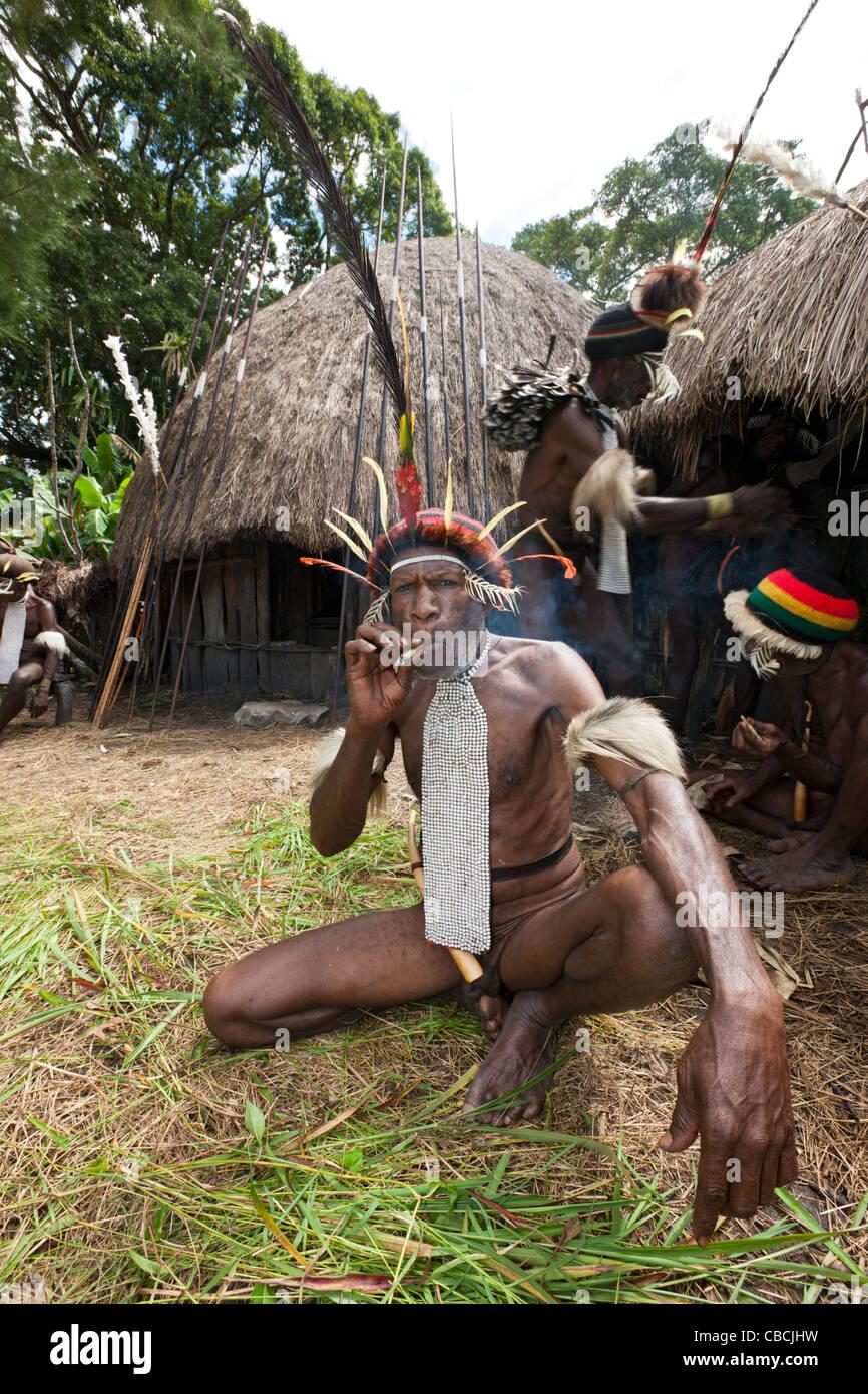 Warrior of Dani Tribe, Baliem Valley, West Papua, Indonesia Stock Photo: 41459989  Alamy